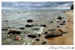 Postcard Latvia. Kurzeme seacoast